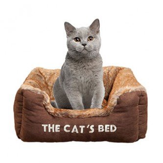 Cat Beds & Houses