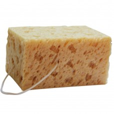 Absorbent Sponge, Car Washing Sponge, Wash Sponge, Perforated
